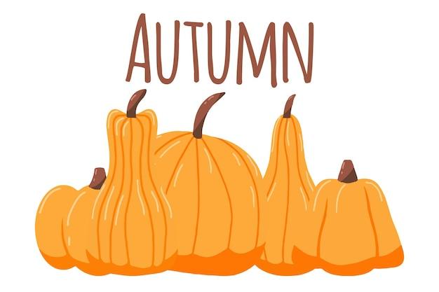 Handgetekende illustratie met pompoenen herfstposter met oranje pompoenen