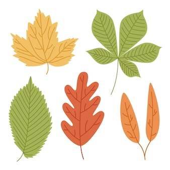 Handgetekende kleurrijke bladeren pck