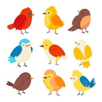 Handgetekende kleurrijke robin-collectie