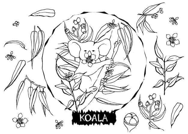 Handgetekende koala met eucalyptusbladeren in doodle-stijl