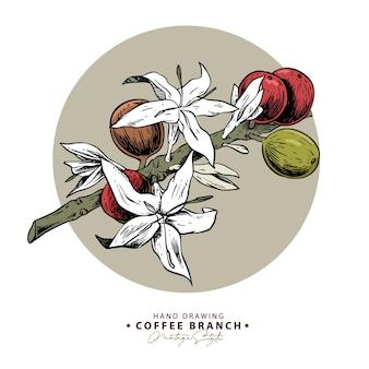 Handgetekende koffieboontakken en bloemen in een beige cirkelillustratie