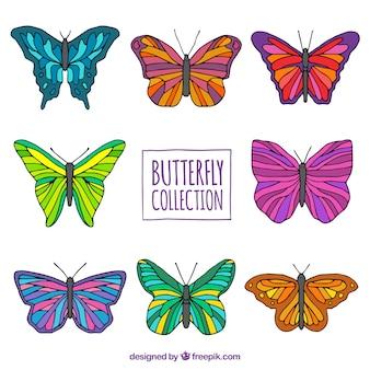 Handgetekende pak gekleurde vlinders