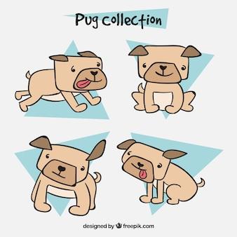 Handgetekende pugs met grappige stijl