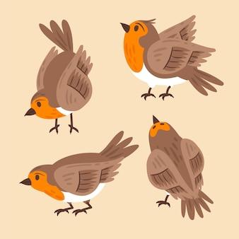 Handgetekende robin-collectie