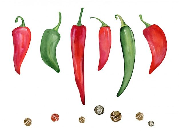 Handgetekende, rode en groene paprika's. aquarel set hete pepers.