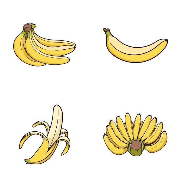 Handgetekende set banaan half gepelde bos rijp fruit vector geïsoleerd