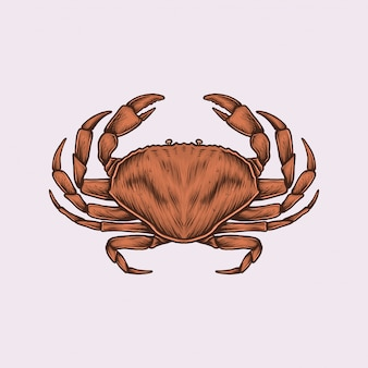 Handgetekende vintage krab