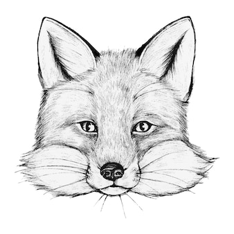 Handgetekende vos