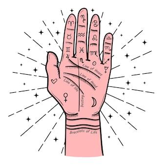 Handlijnkunde illustratie