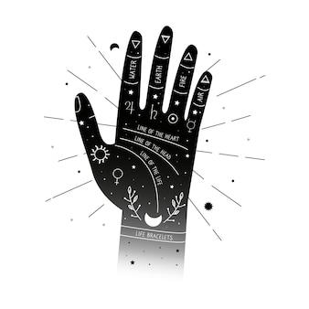 Handlijnkunde met hand en dierenriemen