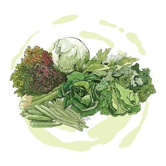 Handtekening van groene groenten