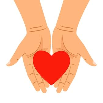 Hart in handen op wit wordt geïsoleerd dat