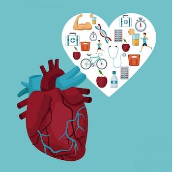 Hartorgel met hartkader met pictogrammengezondheid