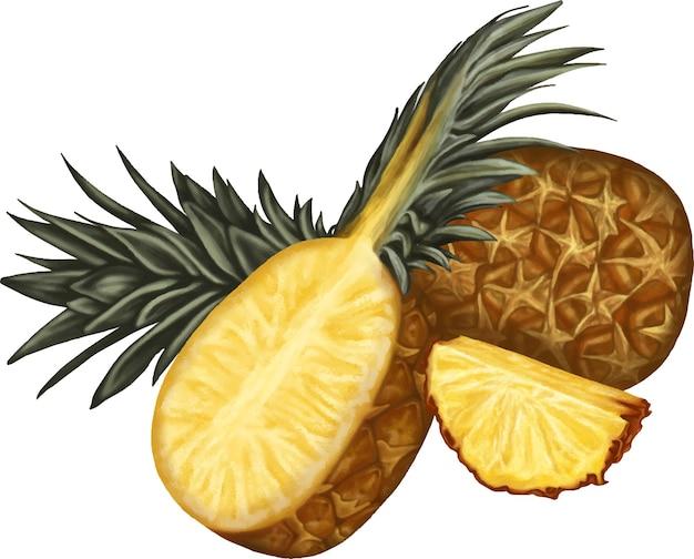 Heerlijke verse ananas illustratie tekening