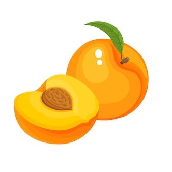 Heldere vectorillustratie van kleurrijke sappige perzik geïsoleerd, biologisch fruit