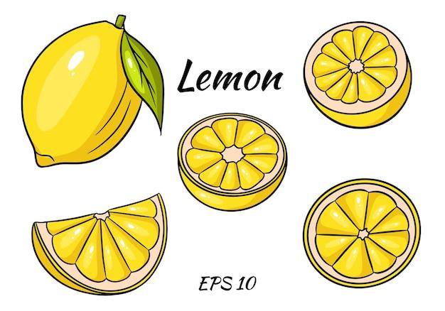 Heldergele citroen. een hele citroen en een in plakjes gesneden wig.