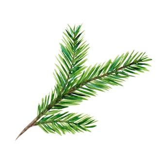Heldergroene aquarel naaldboom tak illustratie voor nieuwjaarskaarten en banner decor