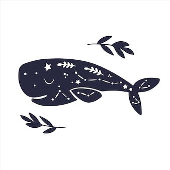 Hemelse dieren walvis schattige baby walvis hemelse magische walvis