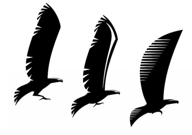 Heraldiek adelaar symbolen en tatoeage geïsoleerd op wit