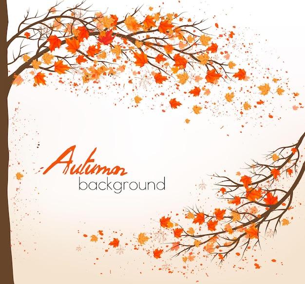 Herfst achtergrond met een boom en kleurrijke bladeren. vector.
