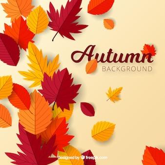 Herfst achtergrond met platte bladeren