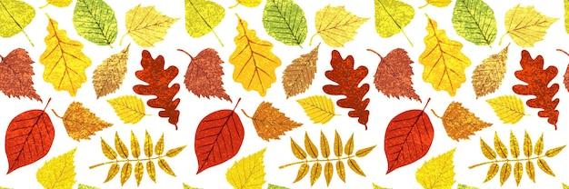 Herfst achtergrond van bladeren, vector design, banner