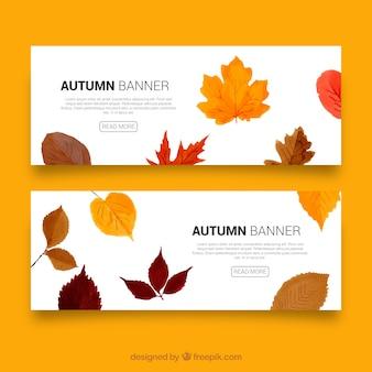Herfst banners met bladeren