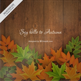 Herfst bladeren achtergrond