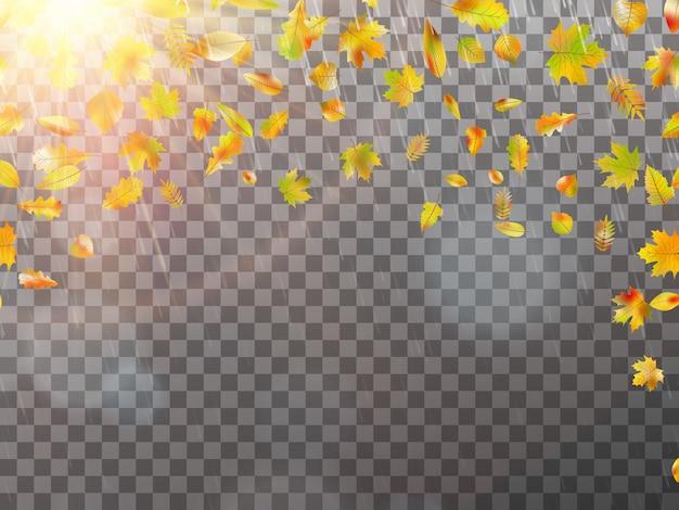 Herfst concept sjabloon met kopie ruimte.