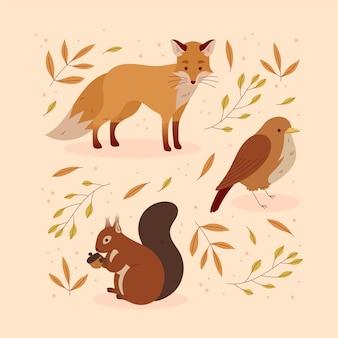 Herfst dieren collectie
