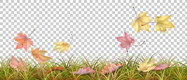 Herfst gras grens en vallende bladeren op transparante achtergrond vectorillustratie