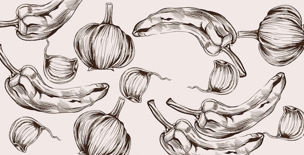 Herfst groenten patroon lijntekeningen. peper- en uienoogst