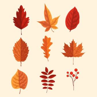 Herfst ingesteld blad