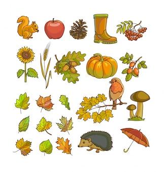 Herfst of herfst pictogram en objecten instellen voor ontwerp.