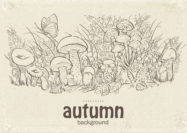 Herfst paddestoelen en vlinders in de lus