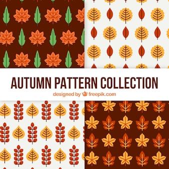 Herfst patronen collectie met bladeren