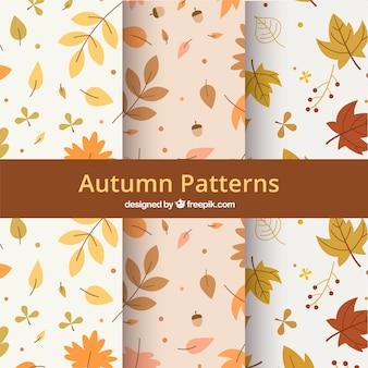 Herfst patronen