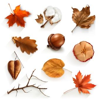 Herfst planten ingesteld