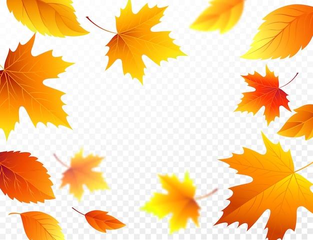 Herfst vallende bladeren