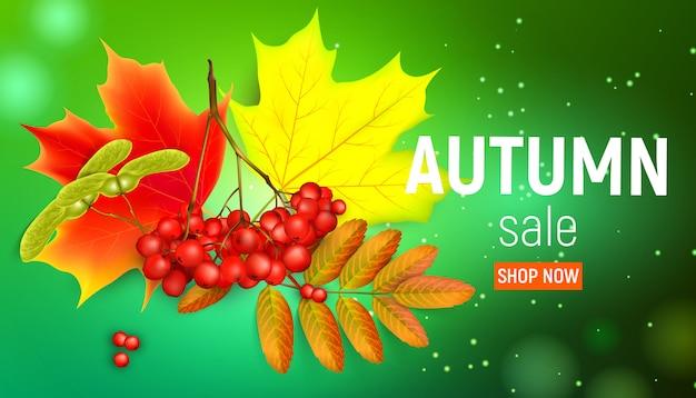 Herfst verkoop banner met esdoorn bladeren en rowan takken met ashberry