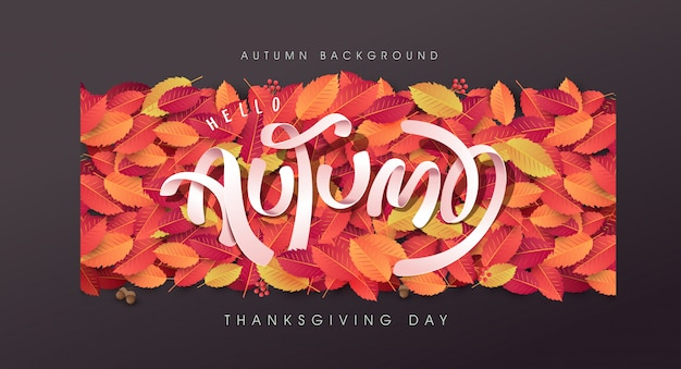Herfstbladeren achtergrond. dankzegging