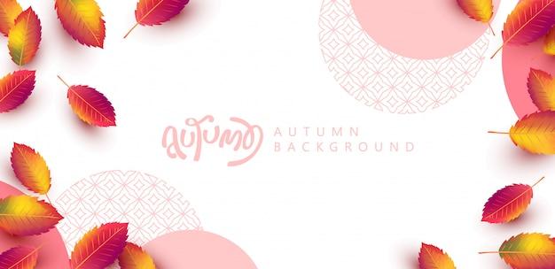 Herfstbladeren achtergrond. seizoensgebonden belettering. promotie verkoop banner van herfst seizoen.