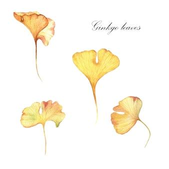 Herfstbladeren, aquarel hand getrokken illustratie.