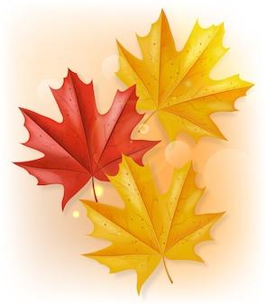 Herfstbladeren bovenaanzicht illustratie