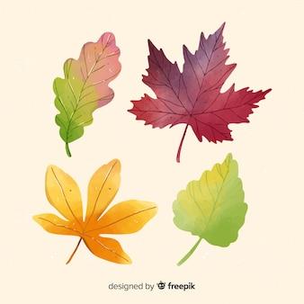 Herfstbladeren collectie aquarel stijl