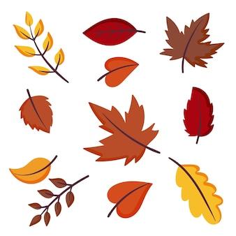 Herfstbladeren collectie