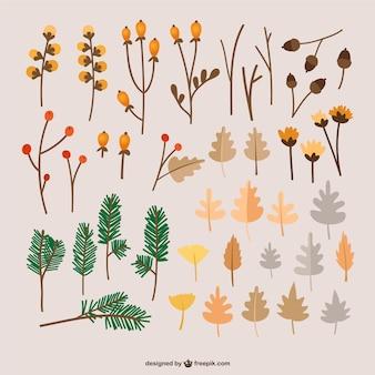 Herfstbladeren illustraties