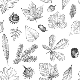 Herfstbladeren naadloze patroon. handgetekende gevallen blad, eikels, kegels afdrukken voor textiel. wallpapers, cadeaupapier of plakboek vector textuur. gegraveerd gebladerte, bladeren en sparrennaalden