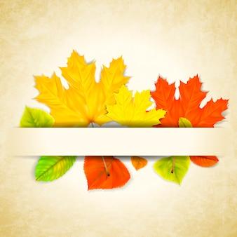 Herfstbladeren op gekrast papier