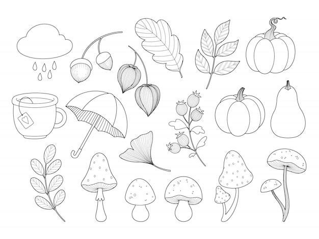 Herfstbladeren, planten, champignons, pompoen contour contour. kleurplaat.